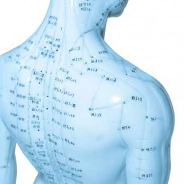 Akupunktur / Naturheilverfahren